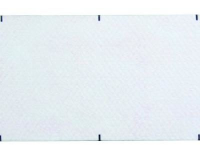 Pathport Disposable Replacement Pad - BE021