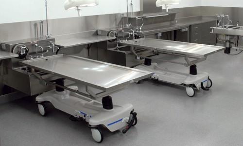Cadaver Transportation & Handling